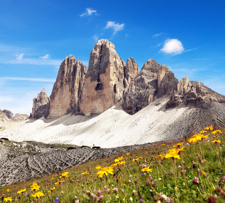 Drei Zinnen or Tre Cime di Lavaredo with beautiful flowering meadow, Sextener Dolomiten or Dolomiti di Sesto, South Tirol, Dolomites mountains view, Italian Alps