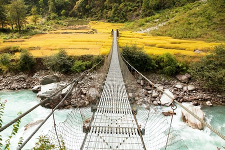 rope hanging suspension bridge and rice or paddy fields in Nepal Himalayas mountains Stock Photo