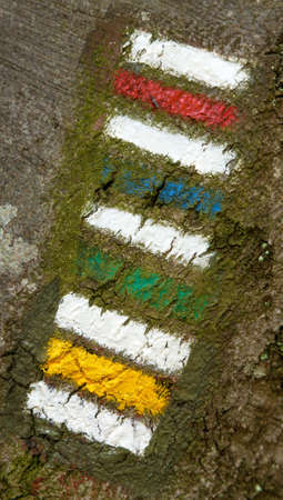 red yellow green and blue tourists signs symbols is used in Czech republic marked on tree trunk background Imagens