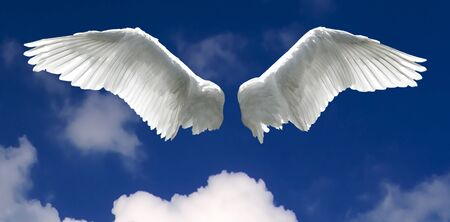 spread wings: Angel wings with background made of sky and clouds.