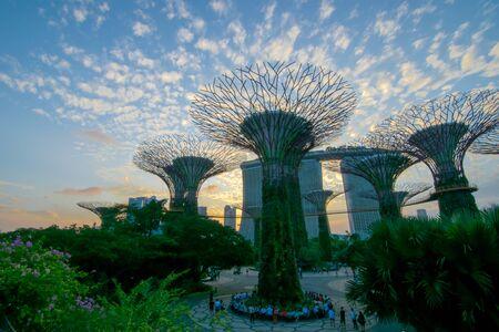 graden: supertree graden singapore