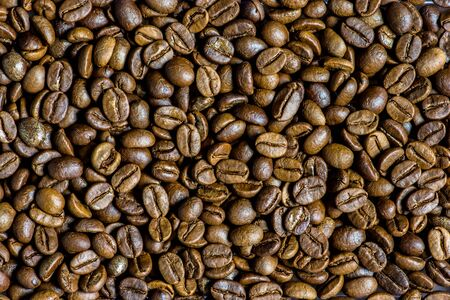 coffee bean, Coffee beans are not roasted. Reklamní fotografie