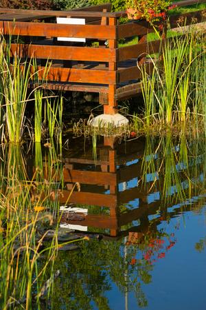 reflexion: jardín encantador en la reflexión del agua Foto de archivo