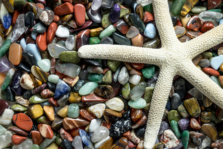 seastar: White star fish with small color stones, close-up colorful pebbles with seastar detail