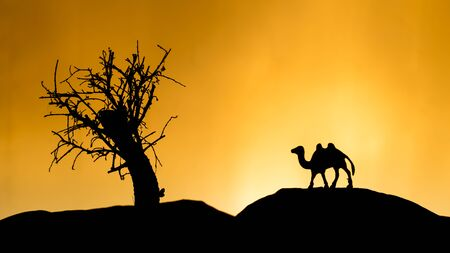 sunset tree: Safari in Africa, orange sunset, tree with toy camel Stock Photo