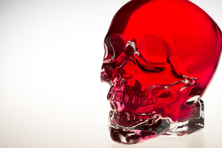 Red crystal skull, red glass brainpan with white background, detail
