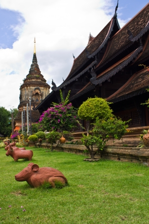 rat in Wat Lokmolee In chiangmai Thailand photo
