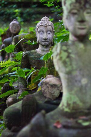 blissfull: Buddha In Wat Umong Chiangmai 2