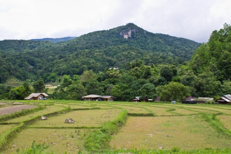 Doi inthanon, Maeglangluang ,Karen villages photo