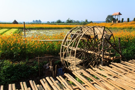 lanna: Turbine irrigate , Muangkan thailand
