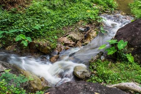 cataract: Cataract in hauykeaw waterfall , Doi Suthep-Pui Nationnal Park , chaingmai Thaland Stock Photo