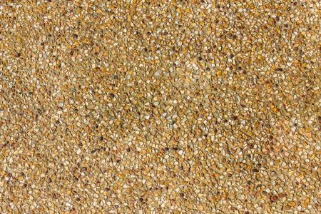 Wet sand texture Stock Photo - 23370784