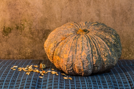 Still Life - Pumpkin And Pumpkin Seeds photo
