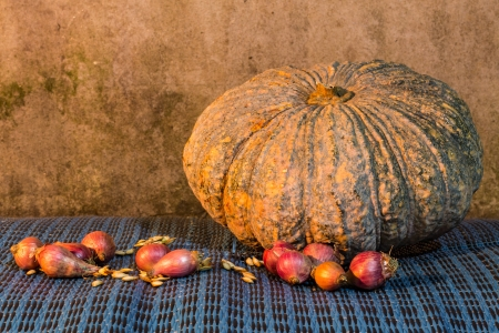 Still Life - Pumpkin, shallots  And Pumpkin Seeds photo