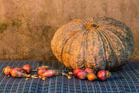 Still Life - Pumpkin, shallots  And Pumpkin Seeds photo