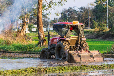 Tractor Prepares Rice Paddy, Agriculture In Thai photo