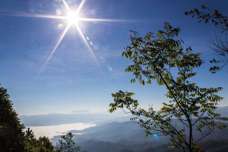 Sunset Sea Of Mist With Doi Luang Chiang Dao, View Form Doi Dam in Wianghaeng Chiangmai Thailand photo