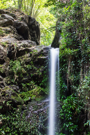 Mon Tha Than Waterfall in Doi Suthep - Pui National Park, Chiang Mai  Thailand photo