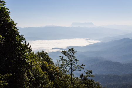 Sea Of Mist With Doi Luang Chiang Dao, View Form Doi Dam in Wianghaeng Chiangmai Thailand photo