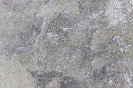 background grey, old cement floor photo
