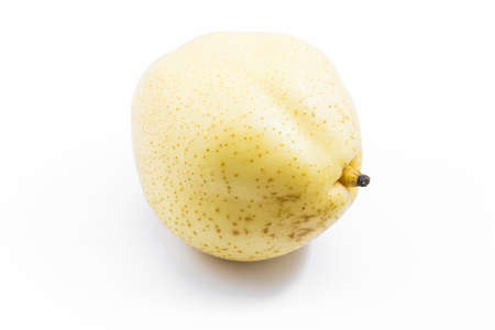asian pear: Juicy Isolated Asian Pear