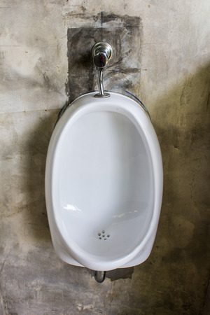 chamber pot: chamber pot, object in toilet