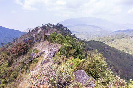 doi: mountain  in doi inthanon, Chiangmai Thailand