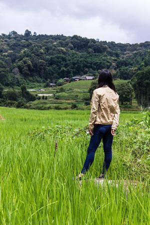 terraced: Thai woman with Terraced Rice Field, Pha Mon Chiangmai Thailand