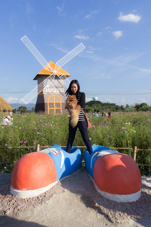 big shoes: Thai woman and pomeranian with big shoes in cosmos field, Muangkaen Chiangmai Thailand