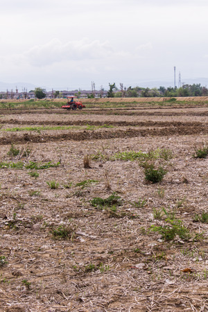 trencher: Tractor in field