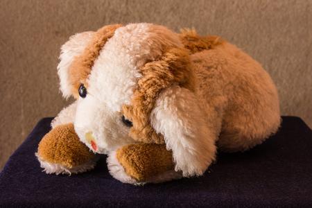 Good Bear Brown Adorable Dog - 60792458-still-life-cute-dog-brown-doll  Picture_421422  .jpg?ver\u003d6