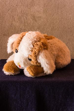 Beautiful Bear Brown Adorable Dog - 60773098-still-life-cute-dog-brown-doll  Snapshot_7717100  .jpg?ver\u003d6