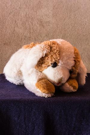 Good Bear Brown Adorable Dog - 60783399-still-life-cute-dog-brown-doll  Picture_421422  .jpg?ver\u003d6