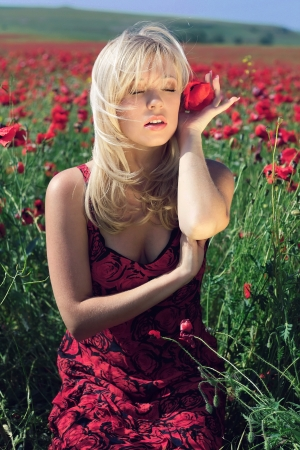 hairpin: The girl in a red dress in the field of poppies