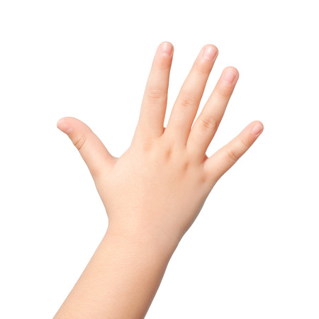 isolated child hand or palm photo