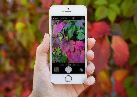 social networking service: Alushta Rusia 30 de septiembre 2014: Mujer que sostiene un iPhone 5 S con servicio de red social Instagram en la pantalla. iPhone fue creado y desarrollado por Apple inc.
