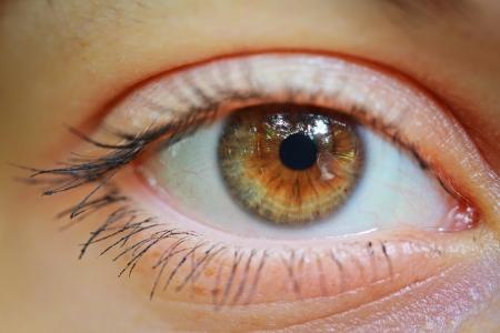 Eye 版權商用圖片 - 14399388