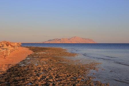 red sea: Red sea coast
