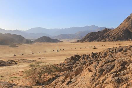 Caravan quad bikes in the desert Stock Photo