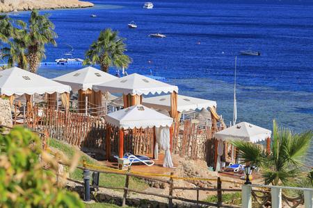 el sheikh: Beach in Sharm El Sheikh