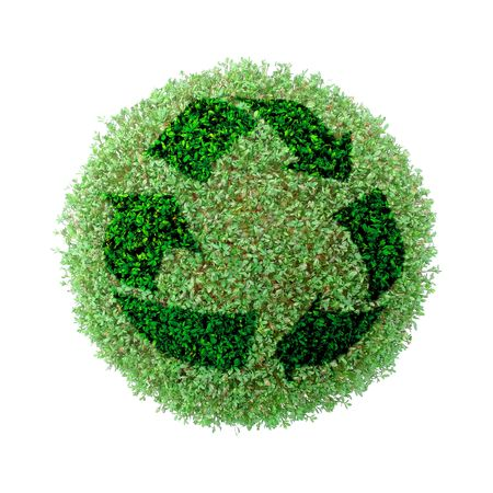 Green plant globe with superimposed recycle symbol over white background