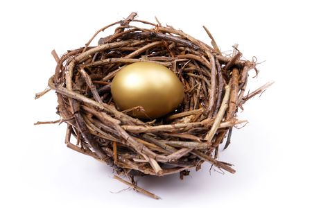 brooding: Golden egg in birds nest over white background