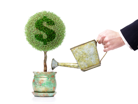 Businessman with metal water can watering a pot tree with US dollar symbol over white background Stock Photo - 1665258