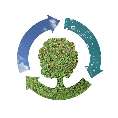 ciclo del agua: Conceptual de la ecolog�a s�mbolo de tres flechas formando c�rculo en representaci�n de tres elementos naturales - el aire, el agua y la tierra verde con �rboles m�s fondo blanco