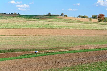 arable: Female farmer working in the arable field