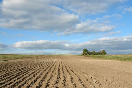ploughed: Ploughed field up to horizon line