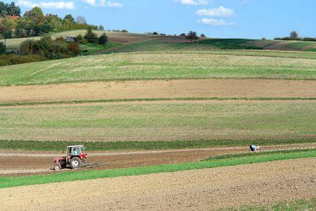 Farm tractor plowing arable field photo