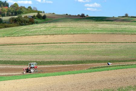 arable: Farm tractor plowing arable field