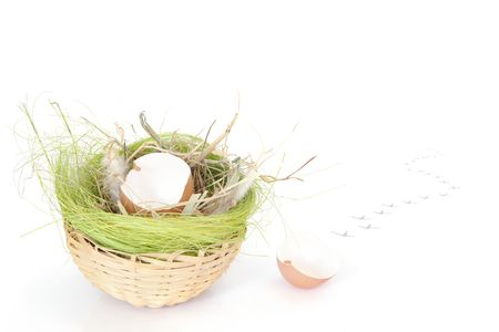 vanishing: Empty hen egg shell halves in wicker basket and vanishing chickling footprints over white background