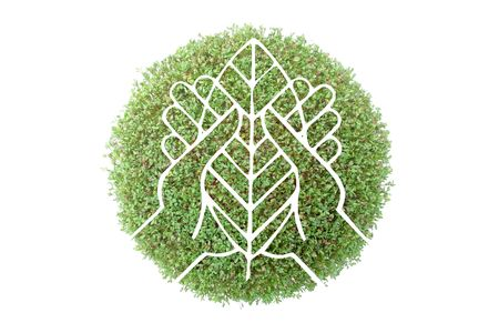 protecting: Symbol of hands with tree leaf superimposed on green plant - recycled paper concept